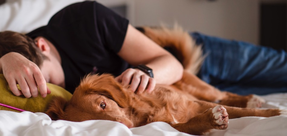 Man having a nap on the bed with his dog