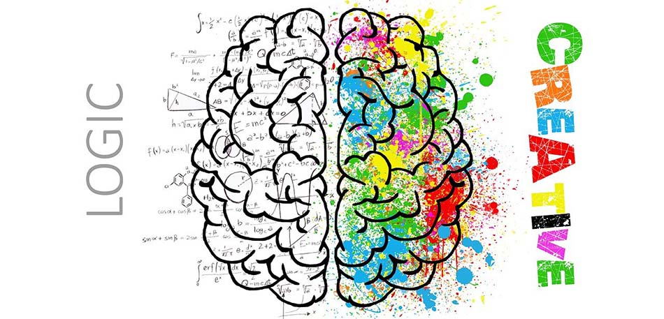 Activity in the Brain - Logic and Creative Sides | Modafinil Effects